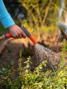 Regenwassernutzungsanlagen - Ein Service der Gessner-Haustechnik